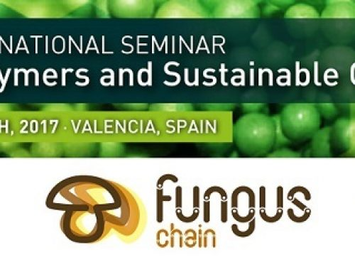 "The poster that Universidad de Alicante presented at the VI International Seminar ""Biopolymers and Sustainable Composites"""