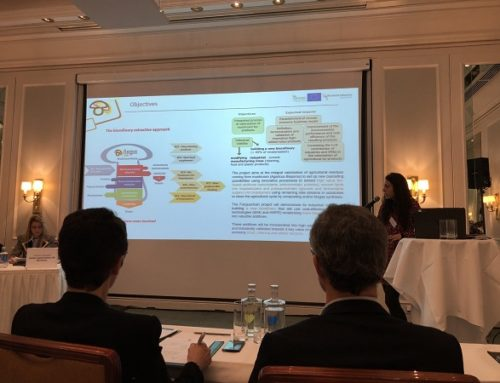The project has been presented at The European Biopolymer Summit