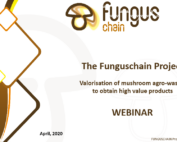 The Webinar is available in YouTube