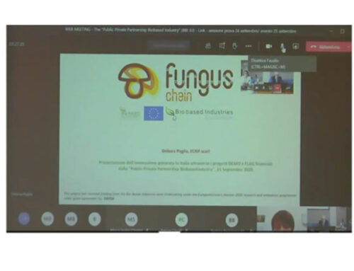 Funguschain Project presented to the Italian University and Research Ministry